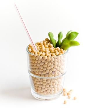 Denominazione Latte Vegetale3