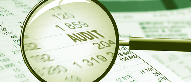 audit a fornitore