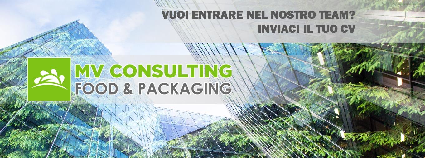 Ricerca Di Personale Mv Consulting