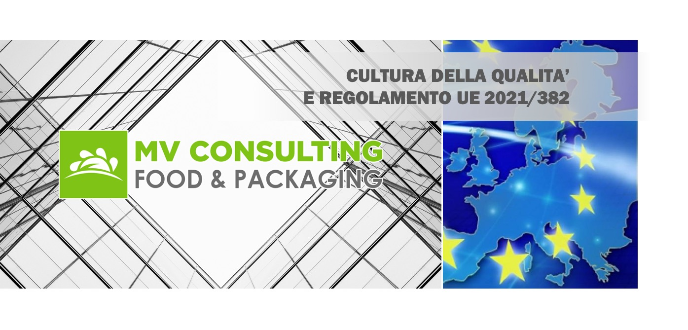 Cultura Della Qualita Mv Consulting