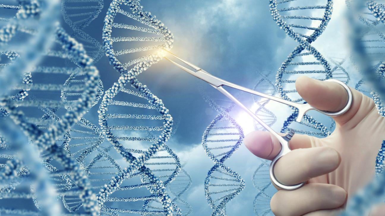 Acrilammide Genoma Research Mv Consulting2