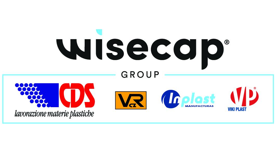 Wisecap Mv Consulting