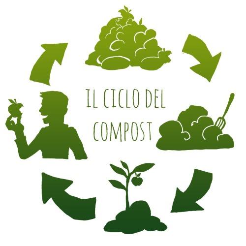 Compostabilita Biodegradabilita Bioplastica Mv Consulting 1