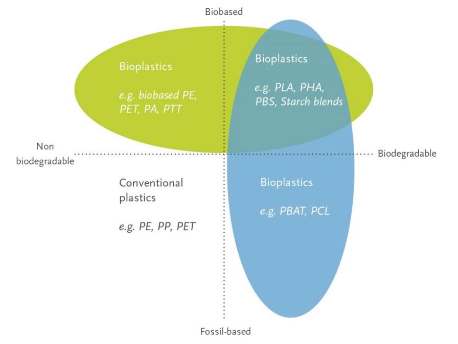 Plastiche Biocompostabili Mv Consulting Srl