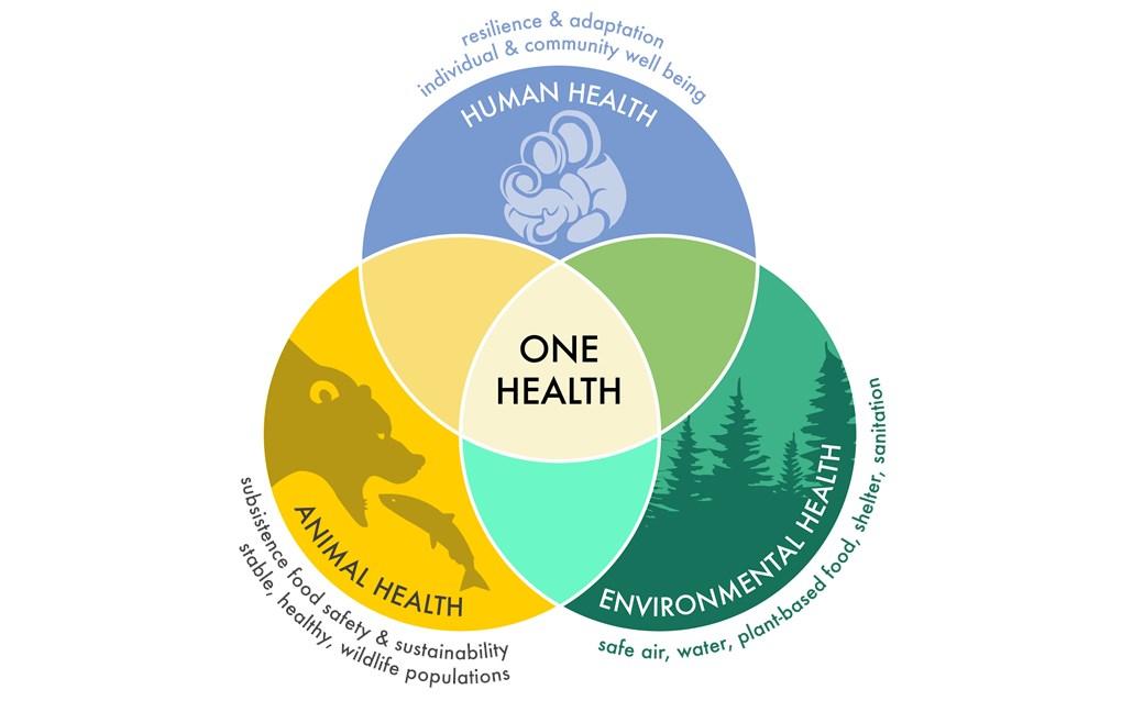 Cambiamento Climatico E Sicurezza Alimentare Mv Consulting